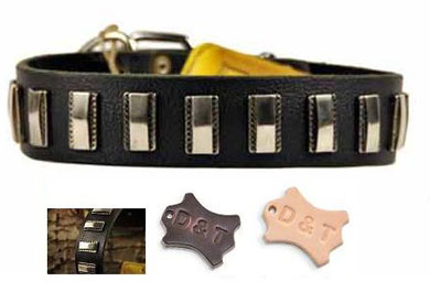 dean and tyler studded dog collar