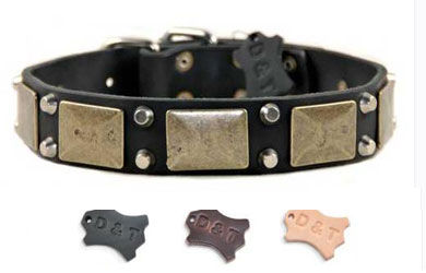 dean and tyler studded and plated dog collar