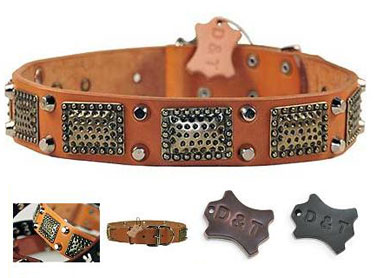 dean and tyler dog collar