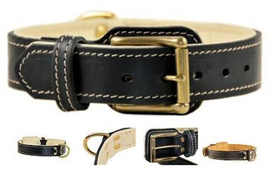 dean and tyler designer leather dog collar