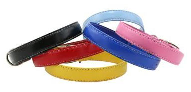 Dover Court Dog Collar