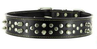 Punk Pooch Spiked collar