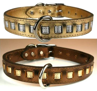 dream weaver leather dog collars metallic