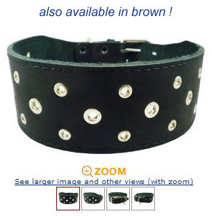extra wide studded leather dog collar