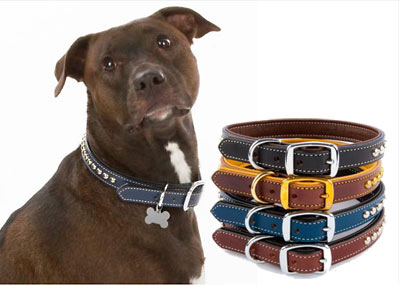 custom personalized leather collars for dogs