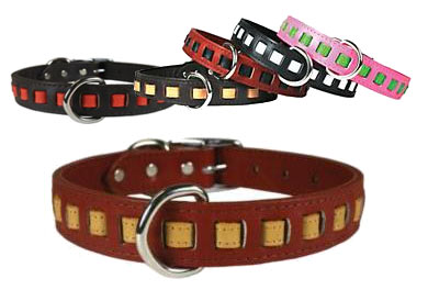 dream weaver leather dog collars