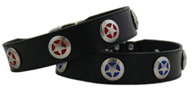texas star studded leather dog collar